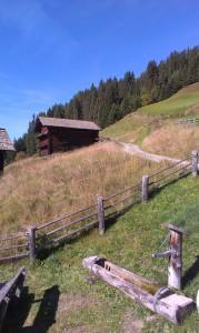 Herbstwanderung steil den Berg hoch und wieder runter